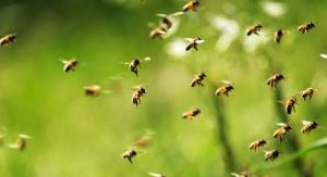 Guerlain Supports Women, Bees