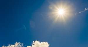 New Study Confirms Vegan Vitamin D3 Ingredient is Bioavailable