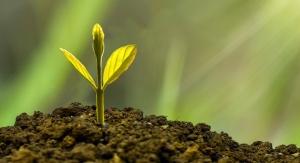 Ashland Donates $20,000 To Help Plant Trees