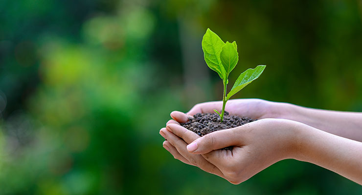 Sustainable Personal Care Formulations