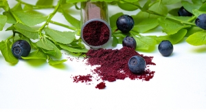 Bilberry Extract Shown to Improve Eye Function Associated with Device Use