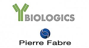 Y-Biologics, Pierre Fabre Enter Immuno-oncology Alliance