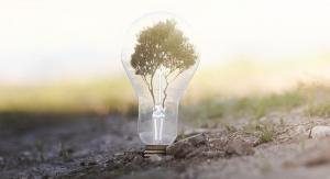 Sabinsa's Intellectual Property Eclipses 300 Patents Worldwide