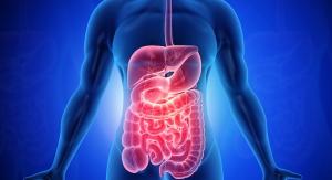 Glucosamine Demonstrates Possible Gut Health Benefits