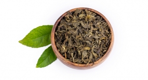 Green Tea Extract May Help Attenuate Nerve Damage Associated with Diabetes