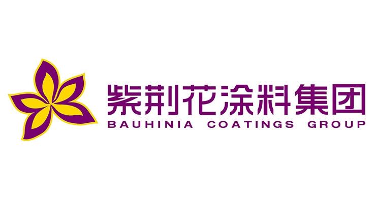 Bauhinia Advanced Materials Group