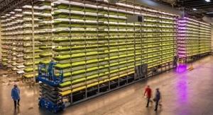 Cargill, AeroFarms Partner on Climate-Resilient Cocoa Farming Research