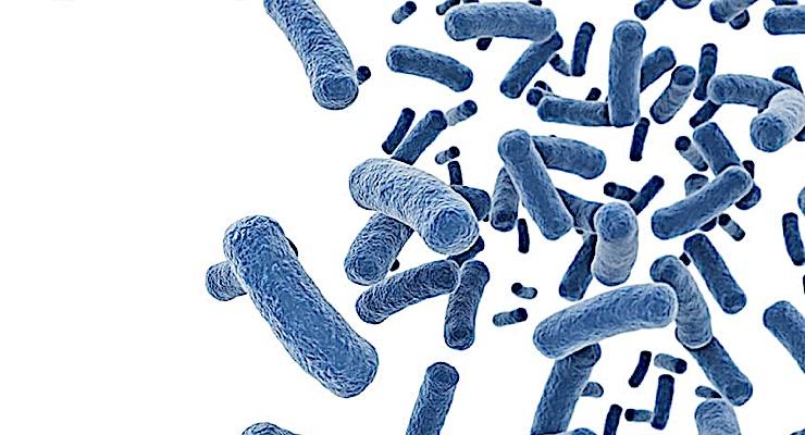 Antimicrobial Resistance 'Arms Race' Realizes Advancements as Post-Antibiotic Era Ensues