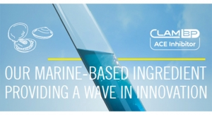 Our Marine-Based Ingredient Providing a Wave in Innovation