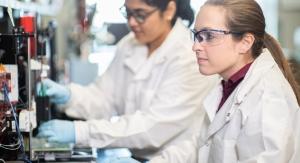 Biomedical Engineers Grow 3D Bioprinted Blood Vessel