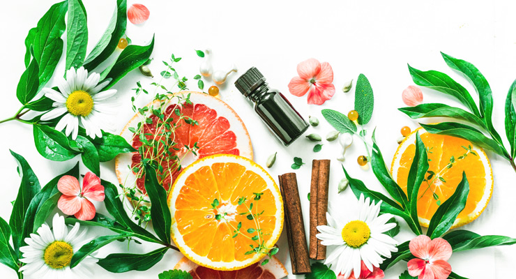 Beauty Ingredient Formulation Directory Fall 2021