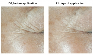 Silab's New Active Ingredient, Peptilium, Clinically Proven to Reduce Wrinkles in 21 Days