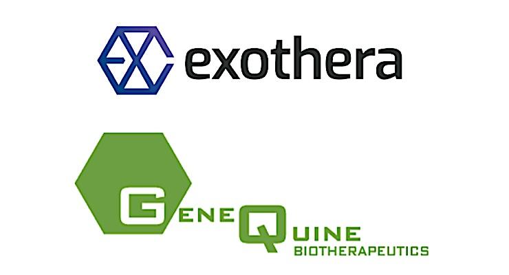 GeneQuine, Exothera Enter Gene Therapy Partnership