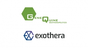 GeneQuine Contracts Exothera to Support the Development of Its Osteoarthritis Gene Therapy