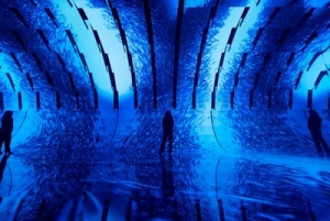 SC Johnson Invites Londoners to Immersive Experience Exploring the Ocean Plastic Pollution Crisis