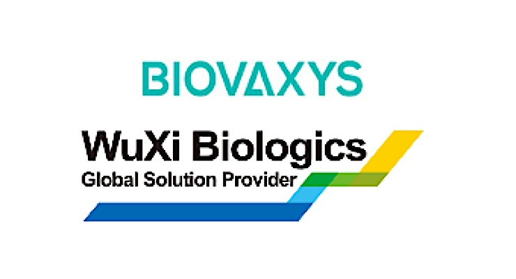 BioVaxys Reports Progress on Covid-19 Vax Candidate
