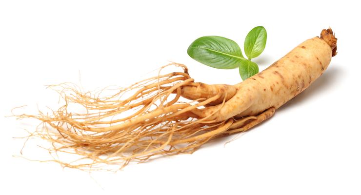 Ginseng Formula Study Shows Improvements in Cholesterol, Cardiovascular Risk Factors
