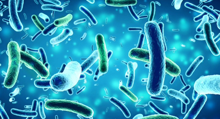 Probiotic Bio-K Plus Linked to Reduced Incidence of C. difficile Infection