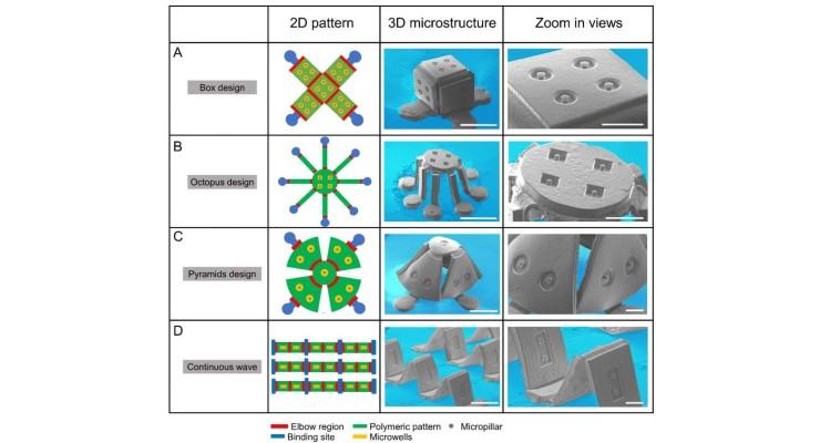 Tissue Engineering Method Based on Kid's Pop-up Books
