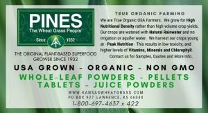 Pines International Inc.