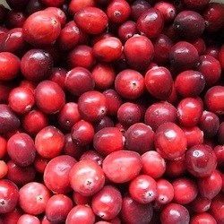 Immune Support from Cranberries
