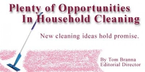 Plenty of Opportunities In Household Cleaning