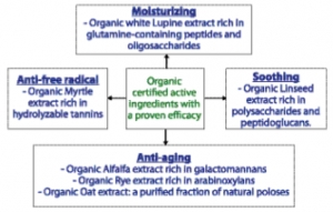 Certified Organic Actives for Cosmetic Formulations