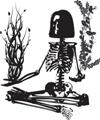 Bone Health Update