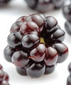 Adventures in Antioxidants: The Story has Just Begun