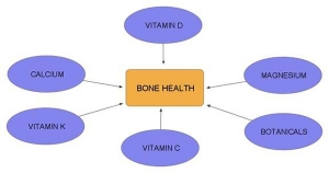 Maintaining Bone Health