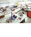 R&D Lab Focus
