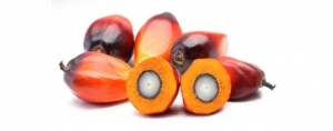 Red Palm Oil Goes Mainstream