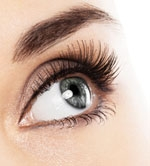 Shiseido Finds Growth Ingredient for Eyelashes