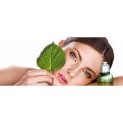 2012 Beauty Ingredients Directory