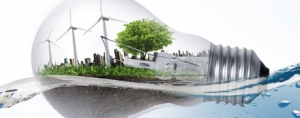 DSM Launches Sustainability Contest