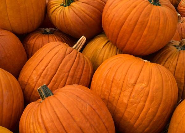 Exfoliate with Pumpkin Spice