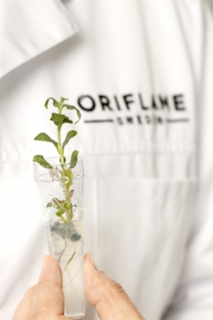 Oriflame Invests in Plant Stem Cell Cultivation