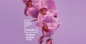Radiant Orchid: How to Use It