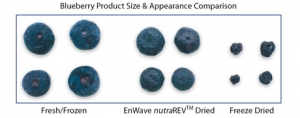 The Future of Dehydrating and Freeze Drying