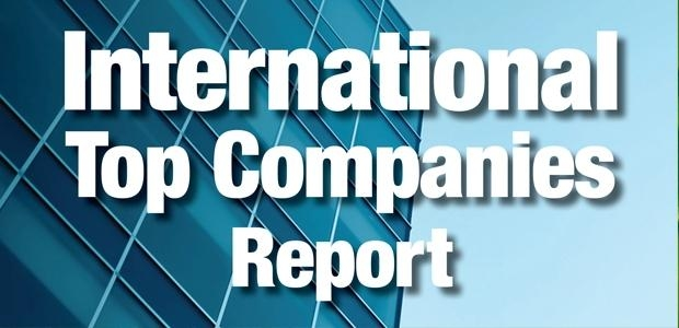 International Top Companies Report 2013