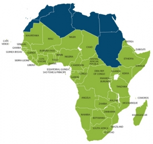 Africa Is Ready to Roar