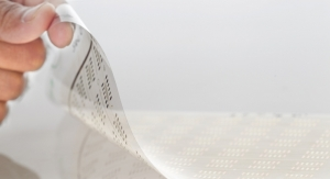 The State of Flexible and Printed Electronics