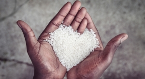 Hidden Hunger: Using Nutraceuticals To Tackle Malnutrition