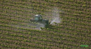 Study Finds Organic Food Reduces Pesticide Levels in the Body