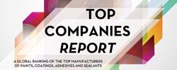 Top Companies Report 2015