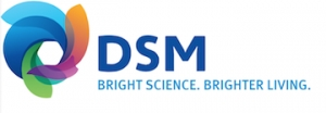 DSM Names Global Leader of R&D