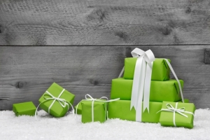 Holiday Spending Insight