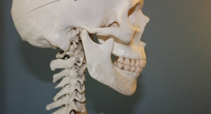 Researchers Discover the Possibility to Completely Restore Human Bones