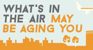 Air Pollution and Aging
