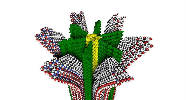 Researchers Develop Completely New Kind of Polymer